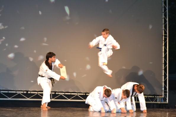 ... demostraciones de artes marciales...