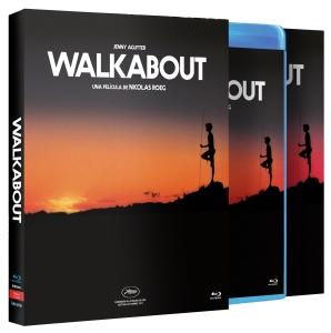 montaje_caja_walkabout